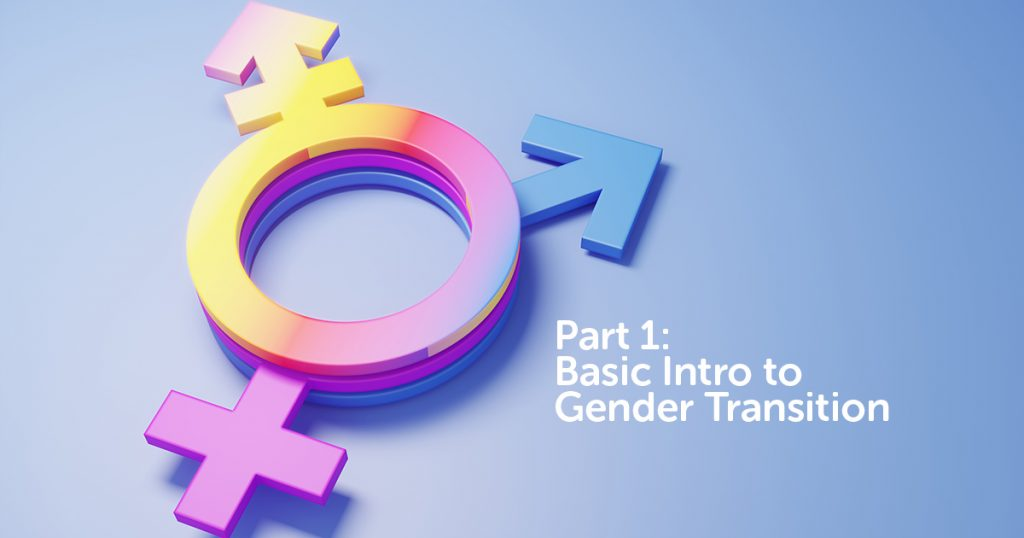 part 1: basic intro to gender transition
